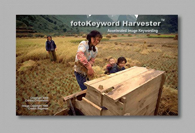 testimonials cradoc fotosoftware - fotoKeyword harvester