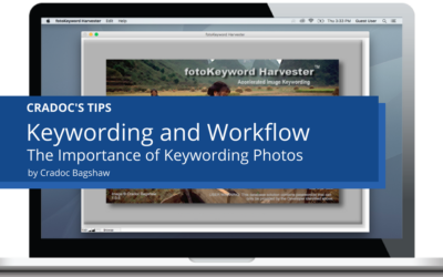 Keywording Photos and Workflow