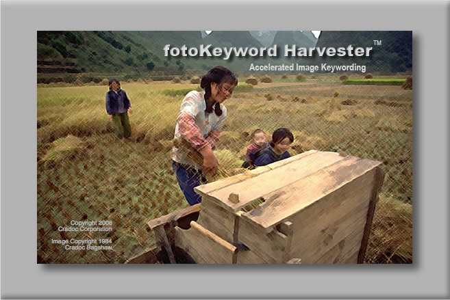 image keywording made easy with Cradoc fotoSoftware's fotoKeyword Harvester