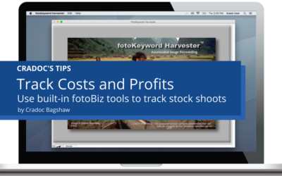 Photographers Track Costs and Profits with Stock Production Worksheet