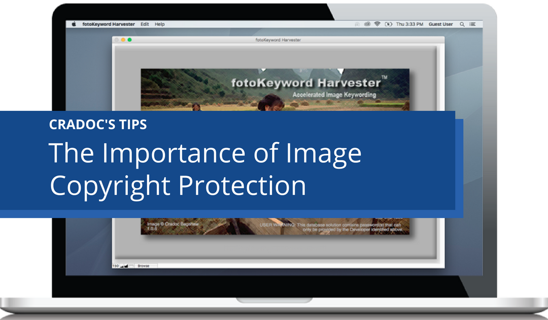 The Importance of Image Copyright Protection - Cradoc fotoSoftware